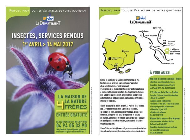 INSECTES AFFICHE