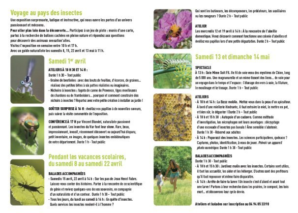 INSECTES PROGRAMME