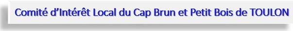 CIL CAP BRUN TITRE