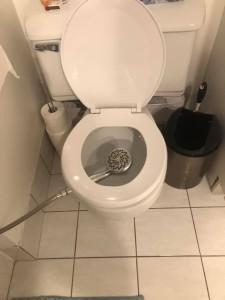 penurie de papier toilette