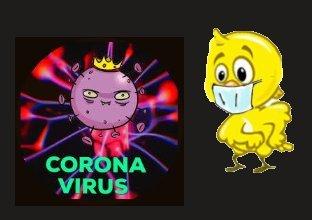 CORONAVIRUS POUSSIN A PEUR